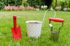 种植树在开花的庭院里 免版税库存图片