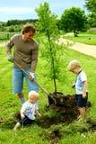 种植树的父亲和他的孩子 免版税库存图片