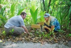 种植棕榈树的新爱夫妇 免版税库存照片