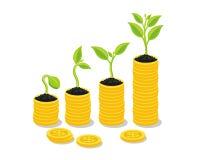 种植生长在储款硬币-投资并且感兴趣概念,商业投资成长概念,与堆金钱硬币 库存照片