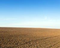 种植的冬天庄稼被犁的领域 免版税库存图片