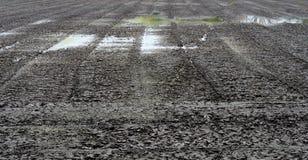 种植的土壤准备,泰国 免版税库存照片