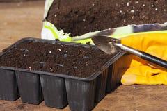 种植盘子、盆栽土和从事园艺的手套 免版税图库摄影