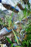 种植花和菜作为垂直的庭院 免版税库存照片