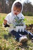 种植蔬菜的子项 免版税库存照片