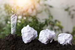 种植长大在土壤的美元和树与回收纸,概念作为救球地球和世界环境日 库存照片
