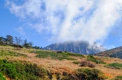 绝种火山,济州Halla山, Eorimok路线 免版税库存图片