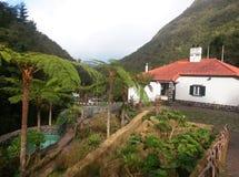 种田与传统房子的鳟鱼水池在疯狂的Ribeiro Frio 免版税库存图片