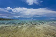 种田在努沙Lembongan,巴厘岛的海草 库存照片