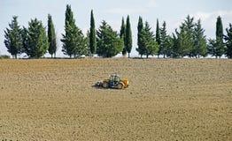 种田在托斯卡纳,意大利 库存图片
