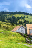 种田在春天在阿尔卑斯,在瑞士 库存图片