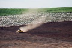 种田在葡萄园开普敦南非 库存图片