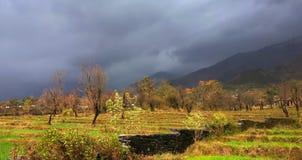 种田在遥远的印地安喜马拉雅山的大阳台的生动的风景颜色 库存照片