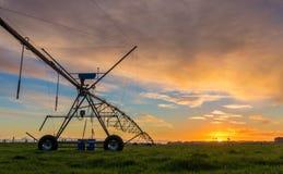 种田新西兰Susnet的灌溉 免版税库存图片