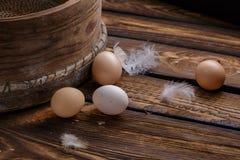 种田新鲜的有机鸡鸡蛋和羽毛在土气木背景 复活节 免版税库存照片
