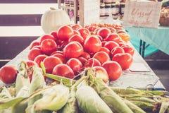种田新鲜的泽西甜玉米和蕃茄在显示在农夫市场收获节日 免版税库存图片