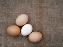 种田新鲜的鸡蛋被分类的颜色,在黑森州的老土气织品b 库存图片