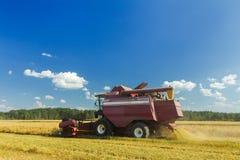 种田有电梯的联合收割机上载谷物入拖车 免版税库存照片