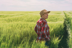 负责任种田的概念,谷物的女性农夫播种fi 免版税图库摄影