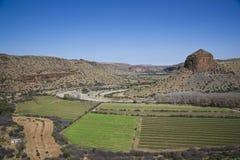 种田的非洲南部 免版税库存图片