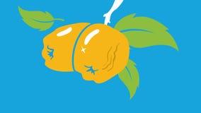 种田的,农业设计元素抽象柑橘背景传染媒介 免版税库存图片