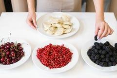 种田食物素食主义者新鲜水果背景 库存图片
