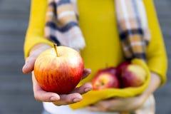 种田,从事园艺,收获,秋天和人概念-妇女用在秋天庭院的苹果 免版税库存照片