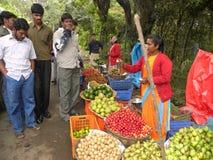 科代卡纳尔,泰米尔纳德邦,印度- 2010卖在路边的6月13日A妇女新鲜水果 免版税库存图片