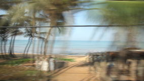 科伦坡,斯里兰卡- 2014年2月:科伦坡从通过火车的海边郊区Timelapse视图  斯里兰卡的铁路运输 股票视频
