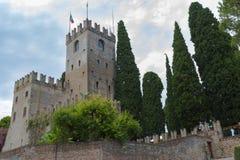 科内利亚诺古老城堡  库存照片
