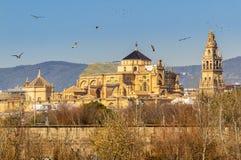 科多巴市老梅斯基塔大教堂在瓜达尔基维尔河河上的在安大路西亚,西班牙 图库摄影