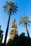 科多巴大教堂钟楼  免版税库存照片