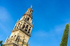 科多巴清真寺大教堂在安大路西亚,西班牙 库存图片