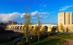 科多巴罗马桥梁 库存照片