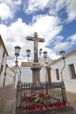科多巴西班牙 免版税库存图片
