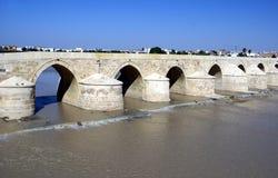 科多巴,瓜达尔基维尔河河,西班牙罗马桥梁  免版税图库摄影