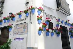 科多巴,西班牙- 2017年5月5日, :在花盆的花在著名花街道Calleja在老犹太的de拉斯弗洛雷斯上的白色墙壁上 免版税库存图片