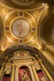 科多巴,阿根廷大教堂的天花板  库存照片