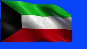 科威特国,科威特-圈的旗子 股票录像