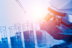 科学化工研究吸移管滴下的样品液体到试管里 免版税图库摄影