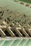 科学和艺术巴伦西亚市:与它的反射的未来派大厦在水01中 免版税库存图片
