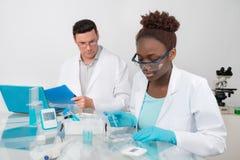 科学家、男性和女性,在研究所的工作 免版税图库摄影