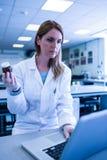 科学家与一台膝上型计算机一起使用在实验室 库存图片