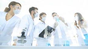 科学家与试管和显微镜一起使用在实验室里 免版税库存照片