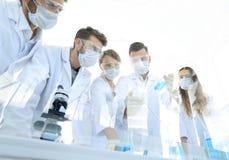 科学家与试管和显微镜一起使用在实验室里 免版税库存图片
