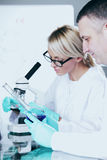 科学家在化工实验室 库存图片