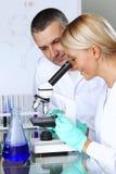 科学家在化工实验室 免版税库存照片