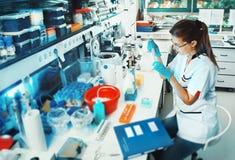 科学家在实验室里工作 免版税库存图片
