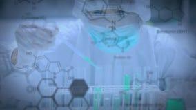 科学家在有试管的一个实验室 股票录像