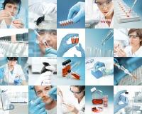 科学家在现代生物设施,图片集合工作 图库摄影